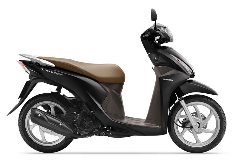 Xe Vision màu đen nâu phiên bản tiêu chuẩn